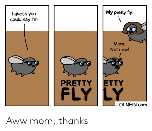 Aww, Guess, and Mom: My pretty fly  I guess you  could say l'm  Mom!  Not now!  ETTY  PRETTY  FLY LY  LOLNEIN.com Aww mom, thanks