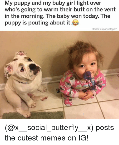 Butt, Memes, and Reddit: My puppy and my baby girl fight over  who's going to warm their butt on the vent  in the morning. The baby won today. The  puppy is pouting about it  Reddit u/moonstep77 (@x__social_butterfly__x) posts the cutest memes on IG!