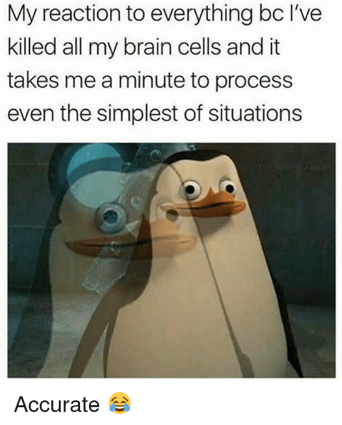 Memes, Brain, and 🤖: My reaction to everything bc I've  killed all my brain cells and it  takes me a minute to process  even the simplest of situations Accurate 😂