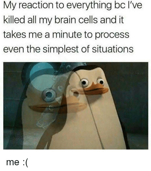 Memes, Brain, and 🤖: My reaction to everything bc I've  killed all my brain cells and it  takes me a minute to process  even the simplest of situations me :(