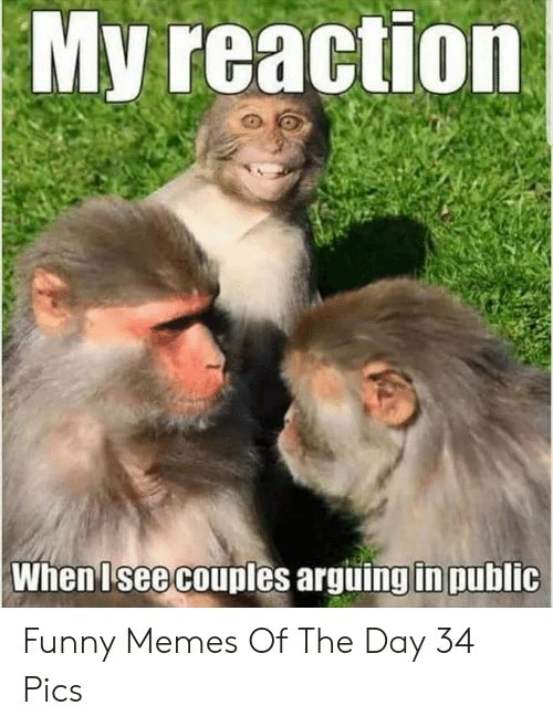 Funny, Memes, and Day: My reaction  When Isee couples arguing in public Funny Memes Of The Day 34 Pics