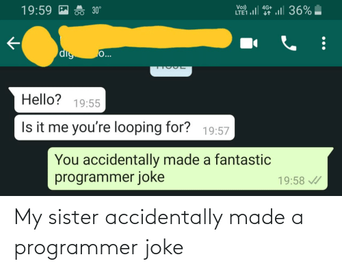sister: My sister accidentally made a programmer joke