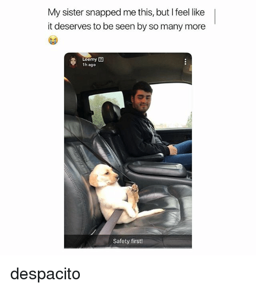 Girl Memes, Snapped, and First: My sister snapped me this, but I feel like  it deserves to be seen by so many more  Leemy  1h ago  Safety first! despacito