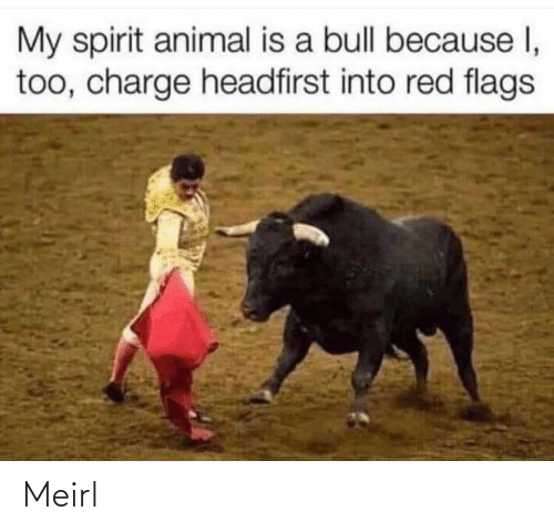 Spirit: My spirit animal is a bull because I,  too, charge headfirst into red flags Meirl