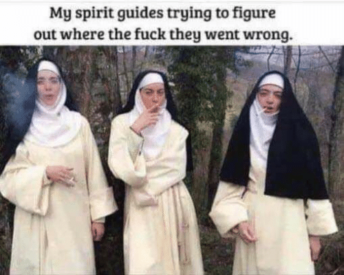 figure out: My spirit guides trying to figure  out where the fuck they went wrong.