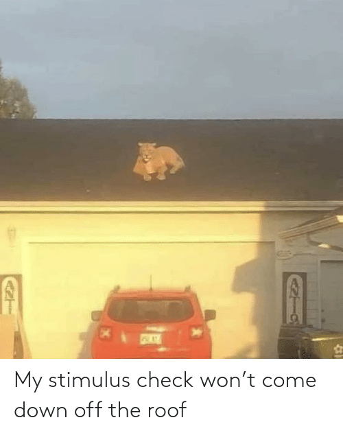 Roof: My stimulus check won't come down off the roof