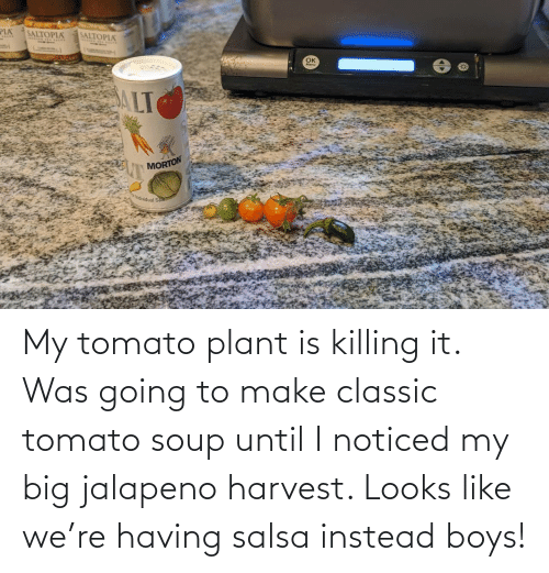 Going: My tomato plant is killing it. Was going to make classic tomato soup until I noticed my big jalapeno harvest. Looks like we're having salsa instead boys!