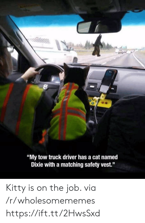 "Cat, Job, and Via: ""My tow truck driver has a cat named  Dixie with a matching safety vest."" Kitty is on the job. via /r/wholesomememes https://ift.tt/2HwsSxd"