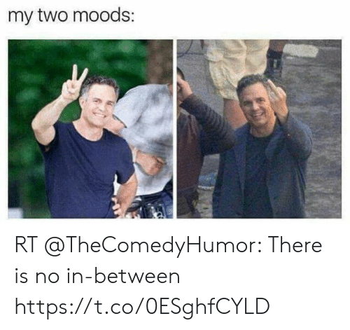 Funny, There, and  No: my two moods: RT @TheComedyHumor: There is no in-between https://t.co/0ESghfCYLD