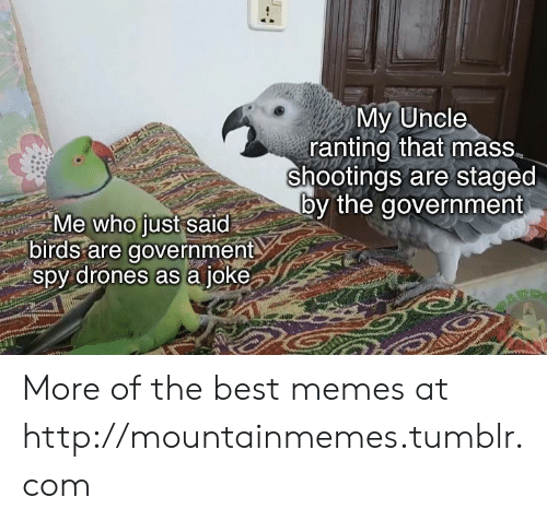 Memes, Tumblr, and Best: My Uncle  ranting that mass  shootings are staged  by the government  Me who just said  birds are government  spy drones as a joke More of the best memes at http://mountainmemes.tumblr.com