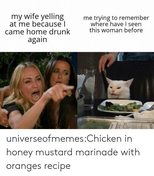 I Seen: my wife yelling  at me because l  came home drunk  again  me trying to remember  where have I seen  this woman before universeofmemes:Chicken in honey mustard marinade with orangesrecipe