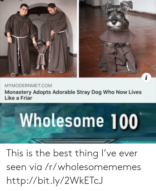 Best, Http, and Wholesome: MYMODERNMET.COM  Monastery Adopts Adorable Stray Dog Who Now Lives  Like a Friar  Wholesome 100 This is the best thing I've ever seen via /r/wholesomememes http://bit.ly/2WkETcJ