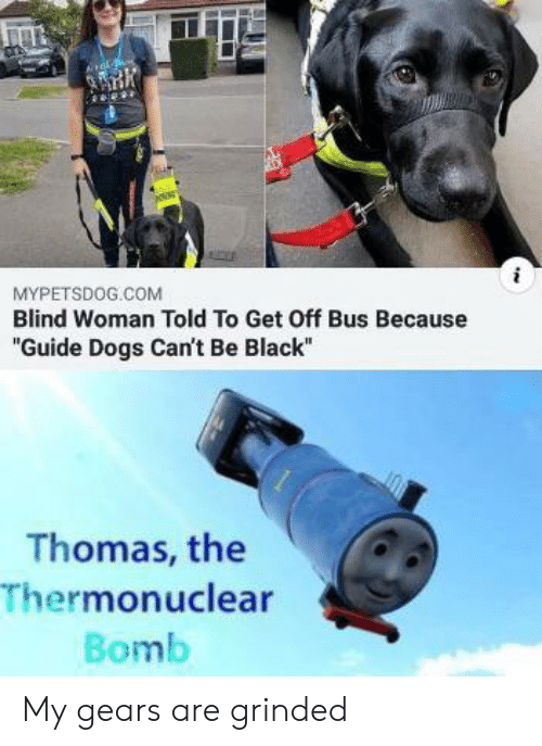 "Dogs, Black, and Thomas: MYPETSDOG.COM  Blind Woman Told To Get Off Bus Because  ""Guide Dogs Can't Be Black""  Thomas, the  Thermonuclear  Bomb My gears are grinded"