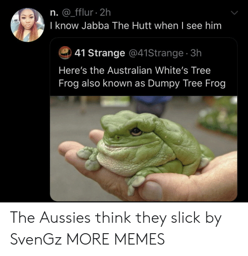 Slick: n. @_fflur 2h  I know Jabba The Hutt when I see him  41 Strange @41Strange 3h  Here's the Australian White's Tree  Frog also known as Dumpy Tree Frog The Aussies think they slick by SvenGz MORE MEMES