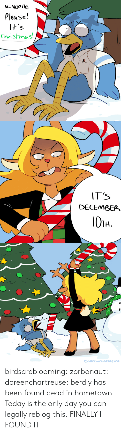 Reblog: N-Noelle,  Please!  I+s  Christmas   IT'S  DECEMBEP  TH.   DOREENCHARTREUSE birdsareblooming:  zorbonaut:  doreenchartreuse: berdly has been found dead in hometown Today is the only day you can legally reblog this.  FINALLY I FOUND IT