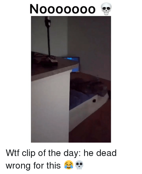 Funny, Wtf, and Day: N0000000 Wtf clip of the day: he dead wrong for this 😂💀