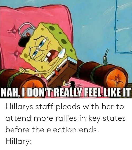 Electioneer: NAH, IDONT REALIY FEEL LIKE IT Hillarys staff pleads with her to attend more rallies in key states before the election ends. Hillary: