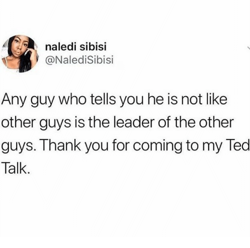 Ted, The Other Guys, and Thank You: naledi sibisi  @NalediSibisi  Any guy who tells you he is not like  other guys is the leader of the other  guys. Thank you for coming to my Ted  Talk.