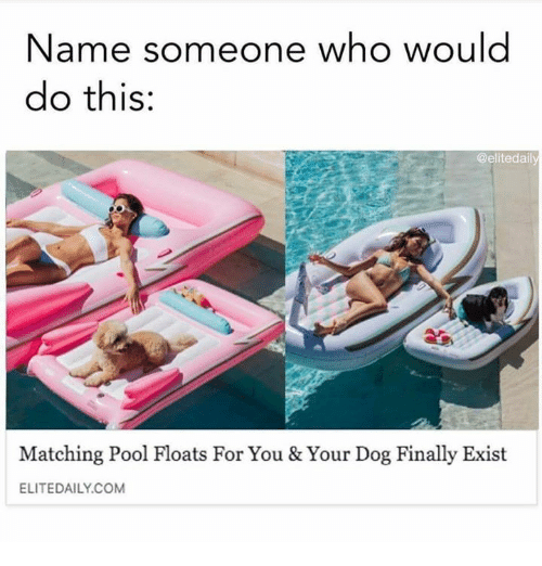 Memes, Pool, and 🤖: Name someone who would  do this:  @elitedaily  Matching Pool Floats For You & Your Dog Finally Exist  ELITEDAILY.COM