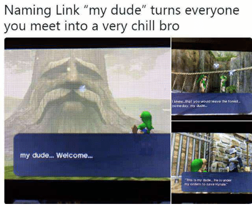 """Chill, Dude, and Link: Naming Link """"my dude"""" turns everyone  vou meet into a very chill bro  I knew that you would leave the torest  someday, my dudo  my dude... Welcome...  s is my dude He is under  my ordars to save Hyrute"""