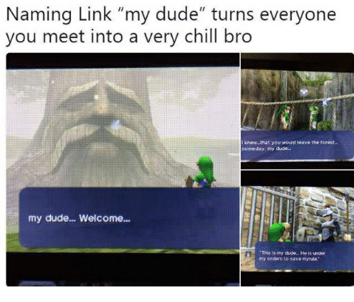 """Chill, Dude, and Link: Naming Link """"my dude"""" turns everyone  you meet into a very chill bro  t knew...that you would leave the torest.  someday, my duae  my dude... Welcome...  This is my dude.. .He is under  my orders to save Hyrule."""