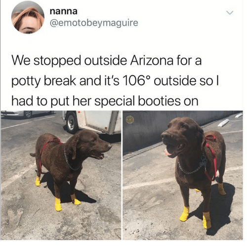booties: nanna  @emotobeymaguire  We stopped outside Arizona for a  potty break and it's 106° outside so l  had to put her special booties on