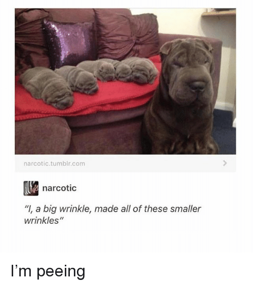 """wrinkle: narcotic.tumblr.com  narcotic  """"I, a big wrinkle, made all of these smaller  wrinkles"""" I'm peeing"""