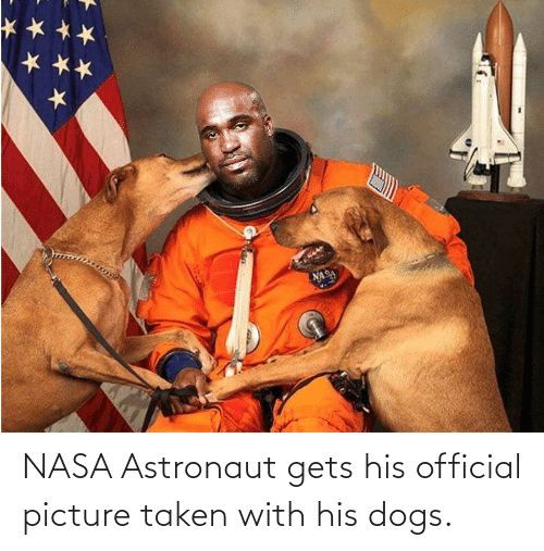 picture: NASA Astronaut gets his official picture taken with his dogs.