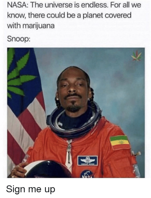 Nasa, Snoop, and Marijuana: NASA: The universe is endless. For all we  know, there could be a planet covered  with marijuana  Snoop: Sign me up