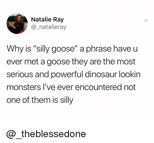 """Dinosaur, Dank Memes, and Powerful: Natalie Ray  @_natalieray  Why is """"silly goose"""" a phrase have u  ever met a goose they are the most  serious and powerful dinosaur lookin  monsters I've ever encountered not  one of them is silly @_theblessedone"""
