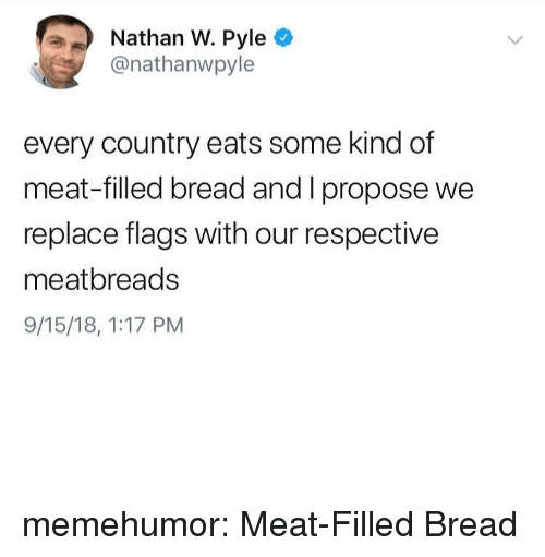 Tumblr, Blog, and Http: Nathan W. Pyle  @nathanwpyle  every country eats some kind of  meat-filled bread and I propose we  replace flags with our respective  meatbreads  9/15/18, 1:17 PM memehumor:  Meat-Filled Bread