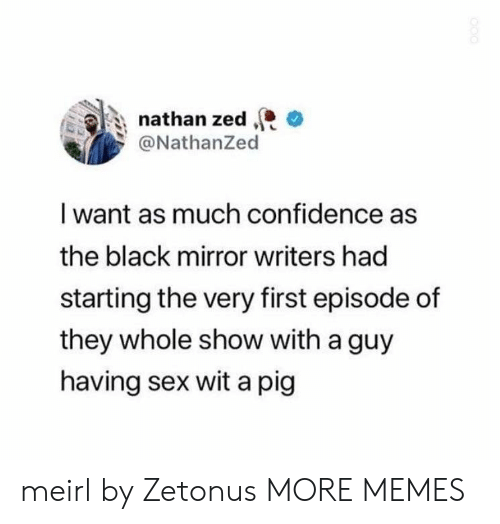 Confidence, Dank, and Memes: nathan zed  @NathanZed  I want as much confidence as  the black mirror writers had  starting the very first episode of  they whole show with a guy  having sex wit a pig meirl by Zetonus MORE MEMES