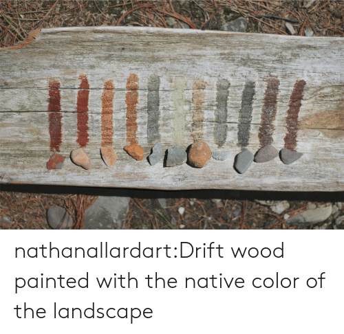 Target, Tumblr, and Blog: nathanallardart:Drift wood painted with the native color of the landscape
