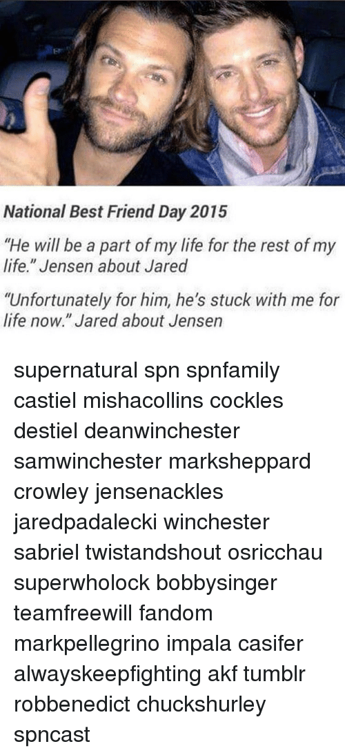 "Best Friend, Life, and Memes: National Best Friend Day 2015  ""He will be a part of my life for the rest of my  life."" Jensen about Jared  ""Unfortunately for him, he's stuck with me for  life now."" Jared about Jensen supernatural spn spnfamily castiel mishacollins cockles destiel deanwinchester samwinchester marksheppard crowley jensenackles jaredpadalecki winchester sabriel twistandshout osricchau superwholock bobbysinger teamfreewill fandom markpellegrino impala casifer alwayskeepfighting akf tumblr robbenedict chuckshurley spncast"