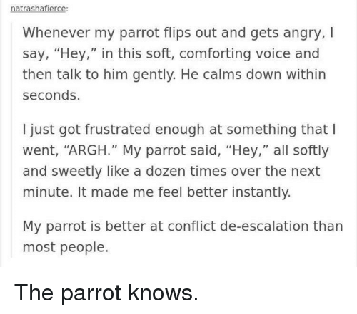 """Voice, Angry, and Got: natrashafierce  Whenever my parrot flips out and gets angry,I  say, """"Hey,"""" in this soft, comforting voice and  then talk to him gently. He calms down within  seconds.  I just got frustrated enough at something that l  went, """"ARGH."""" My parrot said, """"Hey,"""" all softly  and sweetly like a dozen times over the next  minute. It made me feel better instantly.  My parrot is better at conflict de-escalation than  most people. The parrot knows."""