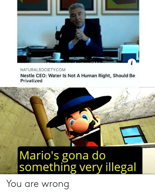 do something: NATURALSOCIETY.COM  Nestle CEO: Water Is Not A Human Right, Should Be  Privatized  Mario's gona do  something very illegal You are wrong