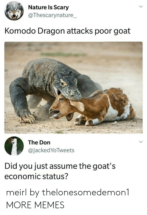 economic: Nature ls Scary  @Thescarynature_  Komodo Dragon attacks poor goat  The Don  @JackedYoTweets  Did you just assume the goat's  economic status? meirl by thelonesomedemon1 MORE MEMES