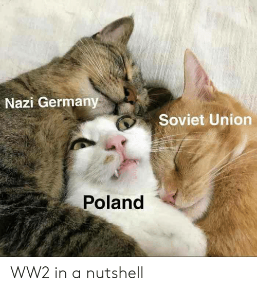 ww2: Nazi Germany  Soviet Union  Poland WW2 in a nutshell