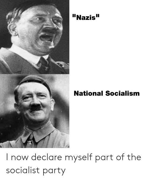 """Party, Socialism, and Dank Memes: """"Nazis  National Socialism I now declare myself part of the socialist party"""