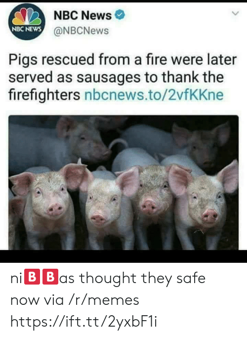 Fire, Memes, and News: NBC News  NBC NEWS  @NBCNews  Pigs rescued from a fire were later  served as sausages to thank the  firefighters nbcnews.to/2vfKKne ni🅱🅱as thought they safe now via /r/memes https://ift.tt/2yxbF1i