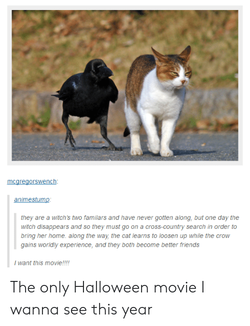 Loosen: nc  animestump  they are a witch's two familars and have never gotten along, but one day the  witch disappears and so they must go on a cross-country search in order to  bring her home. along the way the cat learns to loosen up while the crow  gains worldly experience, and they both become better friends  I want this movie!!! The only Halloween movie I wanna see this year