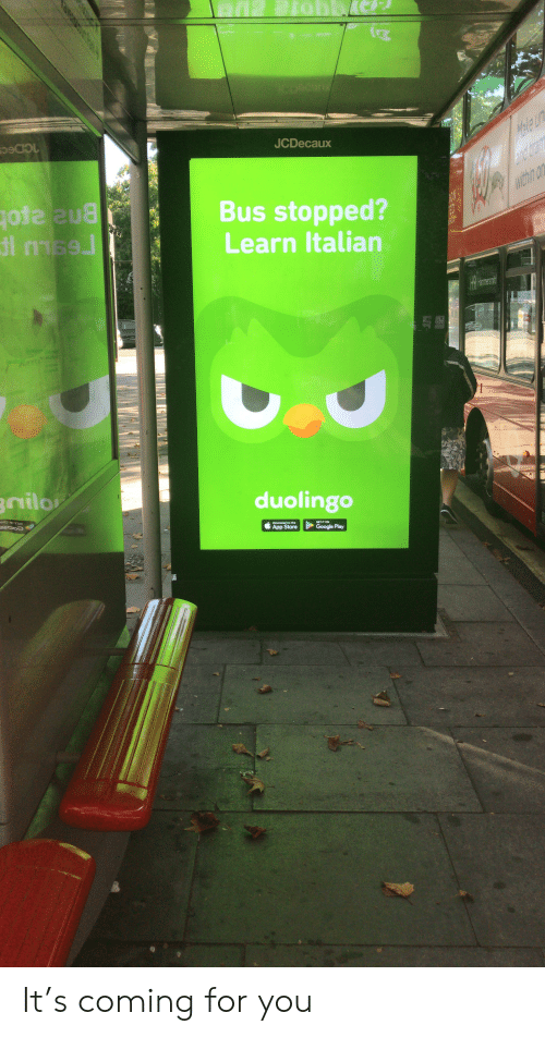 Google, App Store, and Google Play: NCDocun  JCDecaux  Marte un  and tram  within on  Bus stopped?  Learn Italian  1ON  ED  H9 Mermesit  3nilo  duolingo  Download on the  App Store  GET IT ON  Google Play It's coming for you