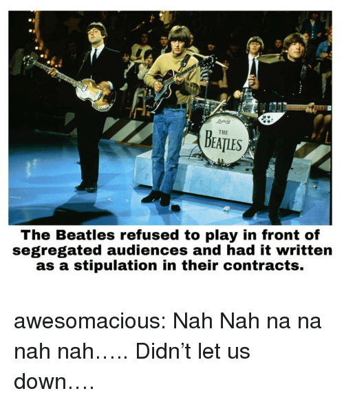 The Beatles, Tumblr, and Beatles: ndutg  THE  DEATLES  The Beatles refused to play in front of  segregated audiences and had it written  as a stipulation in their contracts. awesomacious:  Nah Nah na na nah nah….. Didn't let us down….