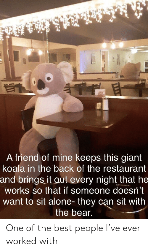 koala: NE  A friend of mine keeps this giant  koala in the back of the restaurant  and brings it out every night that he  works so that if someone doesn't  want to sit alone- they can sit with  the bear. One of the best people I've ever worked with
