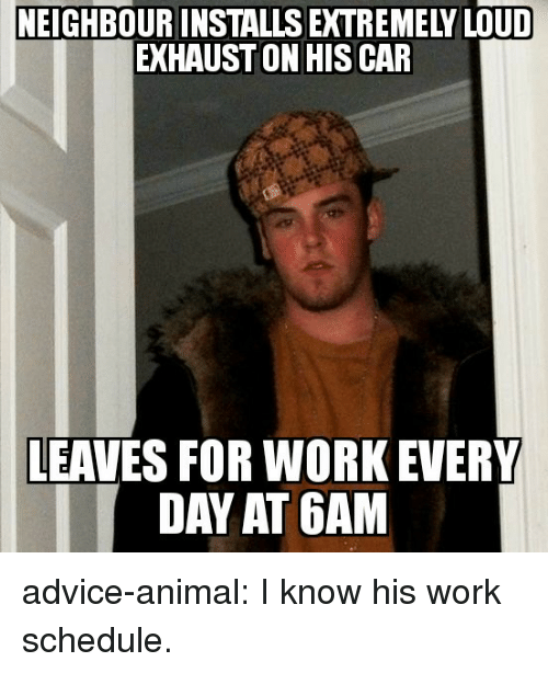 Advice, Tumblr, and Work: NEIGHBOUR INSTALLS EXTREMELY LOUD  EXHAUST ON HISCAR  LEAVES FOR WORK EVERY  DAY AT 6AM advice-animal:  I know his work schedule.