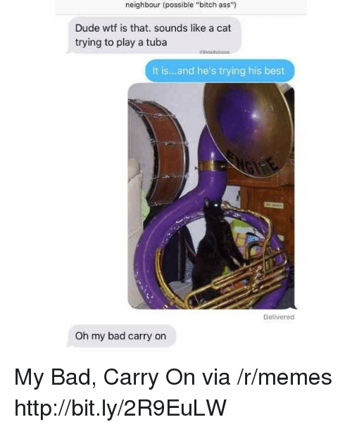 """Ass, Bad, and Bitch: neighbour (possible """"bitch ass""""  Dude wtf is that. sounds like a cat  trying to play a tuba  It is...and he's trying his best  Delivered  Oh my bad carry on My Bad, Carry On via /r/memes http://bit.ly/2R9EuLW"""