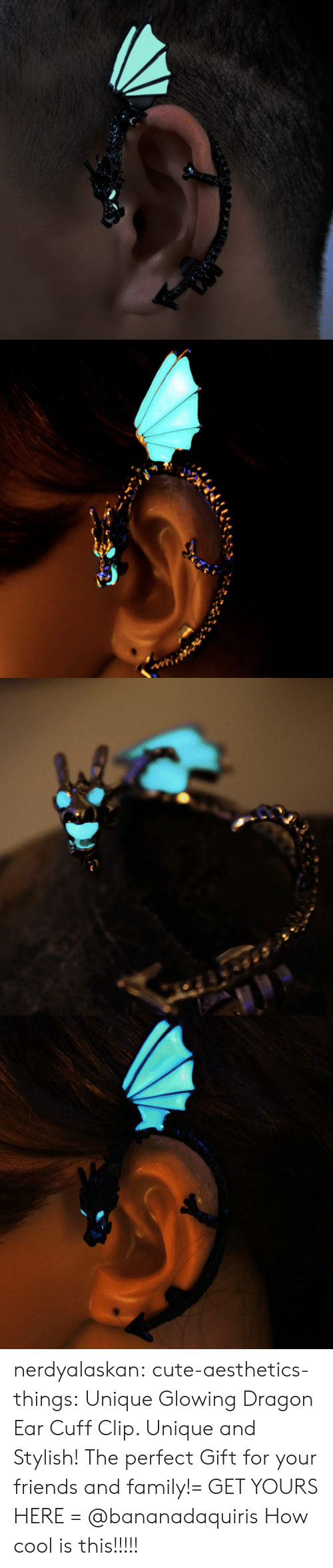 Cute, Family, and Friends: nerdyalaskan:  cute-aesthetics-things:  Unique GlowingDragon Ear Cuff Clip. Unique and Stylish! The perfect Gift for your friends and family!= GET YOURS HERE =  @bananadaquiris  How cool is this!!!!!