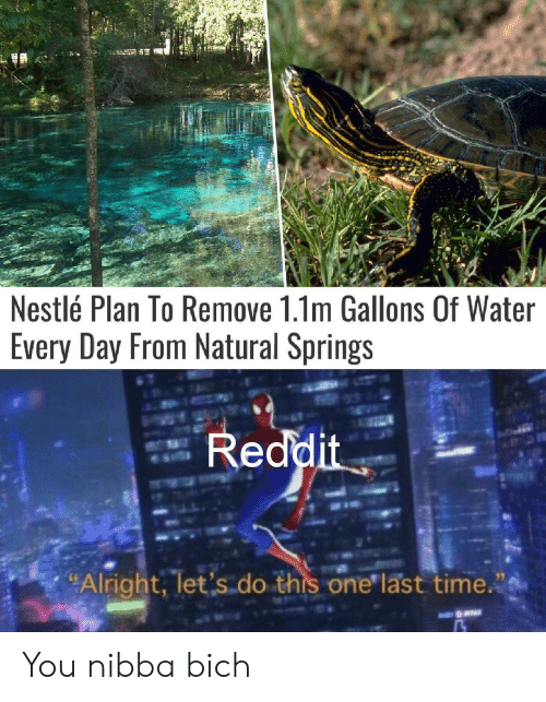 """one last time: Nestlé Plan To Remove 1.1m Gallons Of Water  Every Day From Natural Springs  Reddit  """"Alright, let's do this one last time. You nibba bich"""