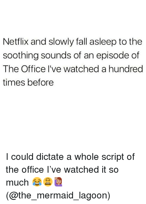 Fall, Memes, and Netflix: Netflix and slowly fall asleep to the  soothing sounds of an episode of  The Office I've watched a hundred  times before I could dictate a whole script of the office I've watched it so much 😂😩🙋🏽♀️(@the_mermaid_lagoon)