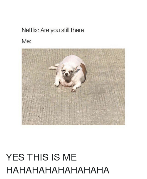 Netflix, Girl Memes, and Yes: Netflix: Are you still there  Me: YES THIS IS ME HAHAHAHAHAHAHAHA